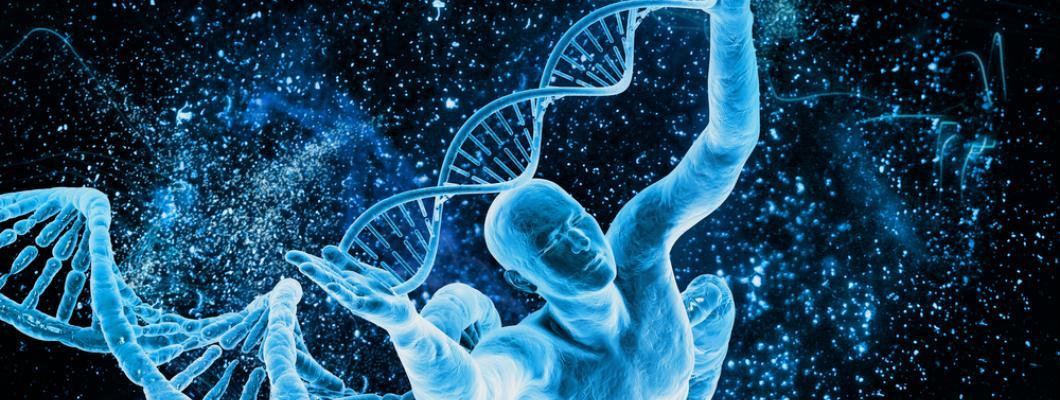 Kilobaser - kávovar na DNA primery
